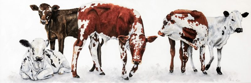 Calves-150cmx 50cm Oil on Canvas